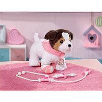 Baby Born Интерактивная Собака Ронни, фото 1