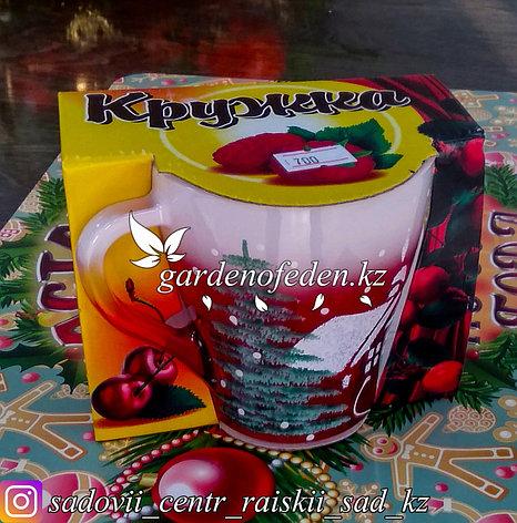 Кружка из цветного стекла с декором. Картонная упаковка. Цвет: Красный/Розовый., фото 2
