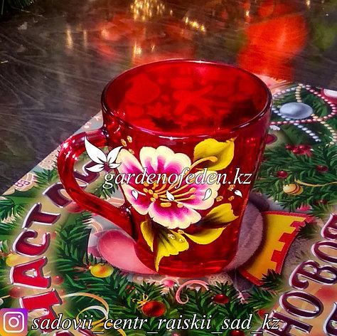 Кружки из цветного стекла с декором. Картонная упаковка. Цвет: Красный. Набор: 6 штук., фото 2