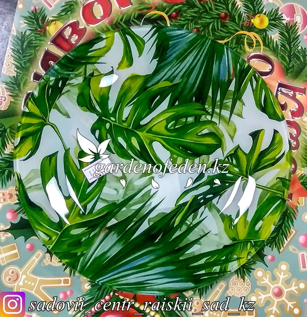 Тарелка десертная, с узором. Цвет: Бело-зеленый. Материал: Стекло.