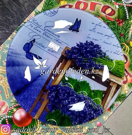 Тарелка десертная, с узором. Цвет: Синий. Материал: Стекло., фото 2