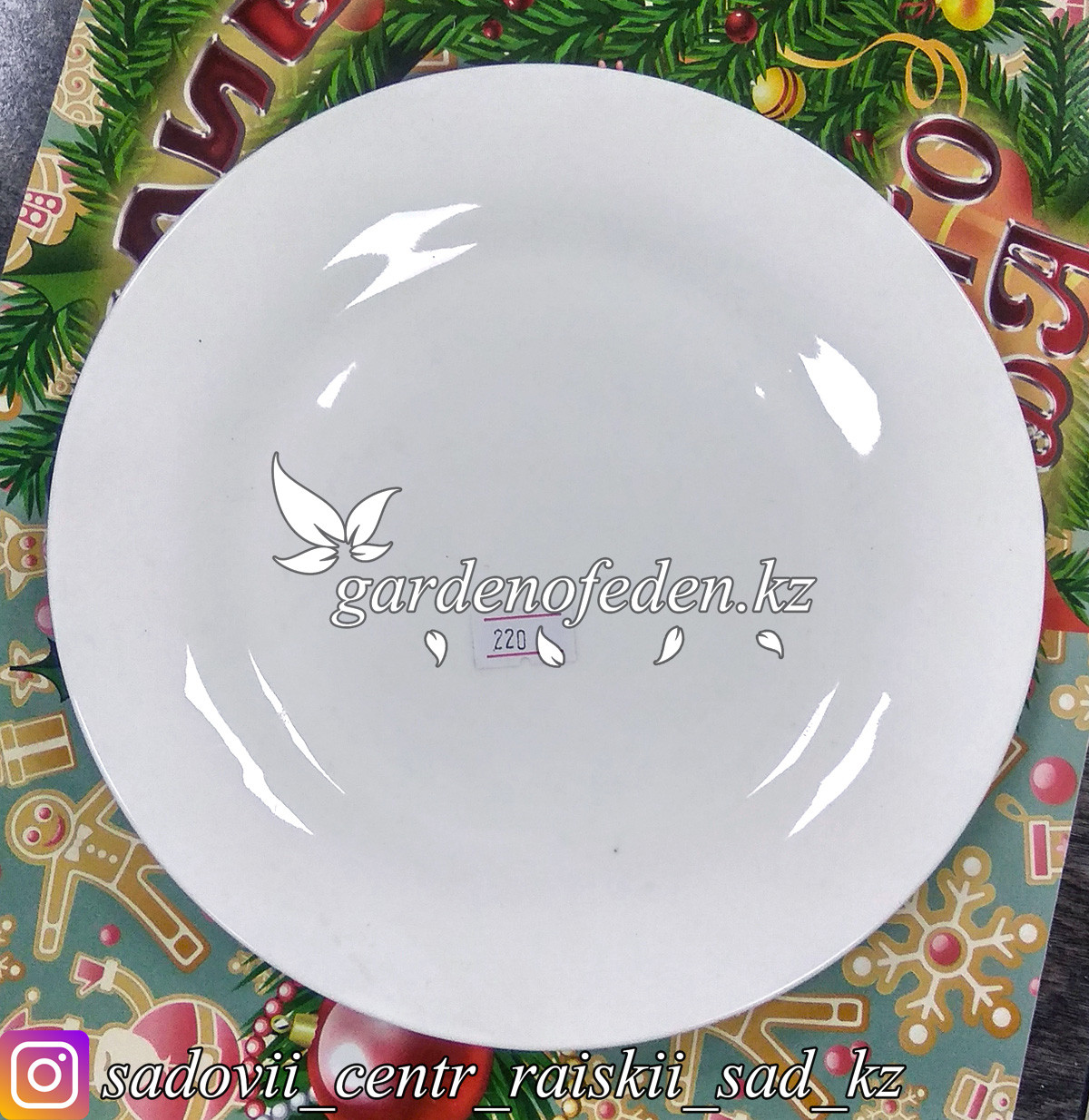 Тарелка обеденная, малая. Цвет: Белый. Материал: Керамика.
