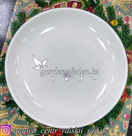 Тарелка обеденная, средняя. Цвет: Белый. Материал: Керамика., фото 2