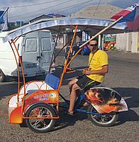 Велорикша Медведь Z1-2M