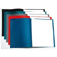 Папка с файлами 100 лист тонкая