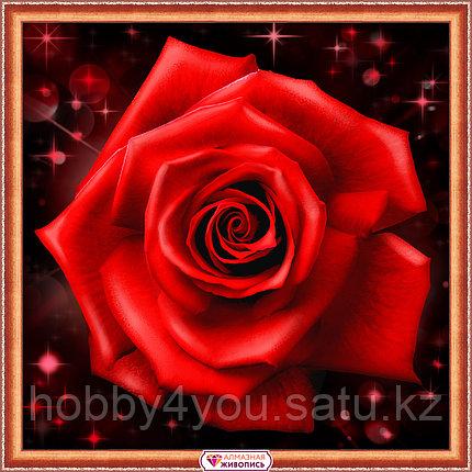 Картина стразами на холсте «Сверкающая роза», 25*25см, фото 2