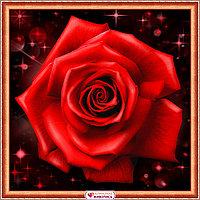 Картина стразами на холсте «Сверкающая роза», 25*25см