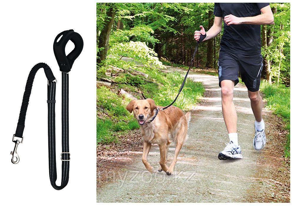Поводок для пробежек с собакой TRIXIE