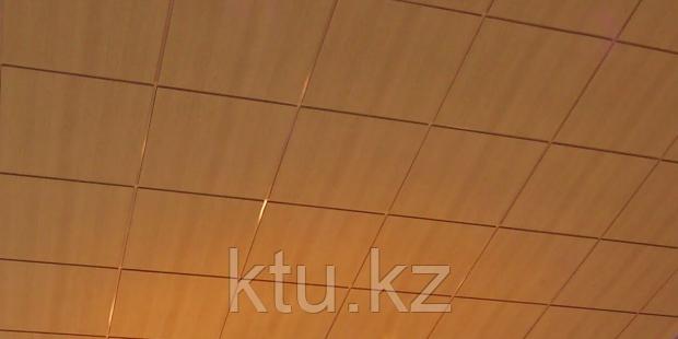Ligna Rockfon A24 потолочные плиты 600x600x15