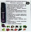 Спреи Valentus (alivemax в новой упаковке)  - Вератрол Слим Виталити Мультивитамин, фото 7