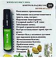 Спреи Valentus (alivemax в новой упаковке)  - Вератрол Слим Виталити Мультивитамин, фото 6