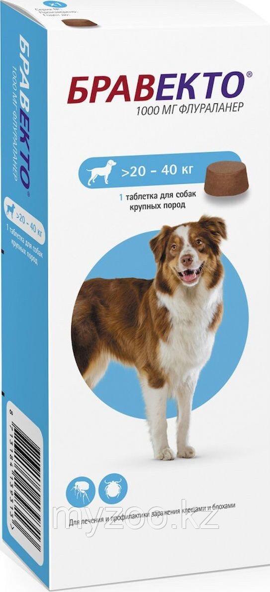 Bravecto, Бравекто жевательная таблетка для собак весом 20-40кг., 1000мг