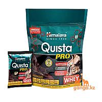 Сывороточный протеин КВИСТА ПРО со вкусом шоколада (PROTEIN QUISTA PRO HIMALAYA), 7 саше по 34 гр