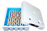 Инкубатор для яиц автоматический 64 яиц