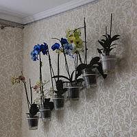 """Подставка для цветы """"Косая-6 для орхидеи"""" настенная"""