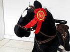 Музыкальная лошадка-качалка, фото 3