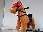 Музыкальная лошадка-качалка для детей, фото 2