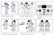 Гидроэлектрический робот на радиоуправлении, фото 5