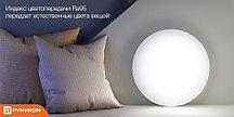 Потолочная лампа Xiaomi LED Ceiling Light (450 mm)