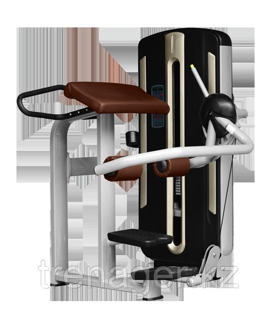 BRONZE GYM MNM-016A Ягодичные мышцы