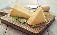 Сыроварня твердых и мягких сыров на 2000 л/сутки