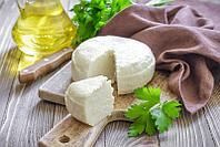 Сыроварня адыгейского сыра на 600 л/сутки