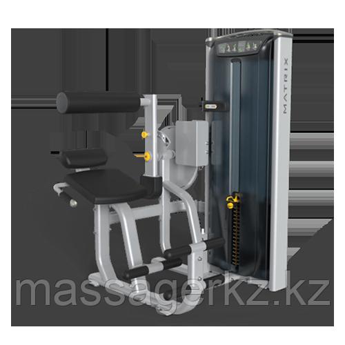 MATRIX VERSA VS-S531P Скручивание/ Разгибание спины (СЕРЕБРИСТЫЙ)