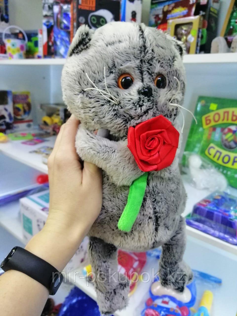 Мягкая игрушка Кот Басик 25 см с розой