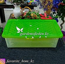"""Ящик для хранения на роликах, с крышкой """"BranQ"""". Материал: Пластик. Цвет: Зеленый/Полупрозрачный. Объем: 30л."""