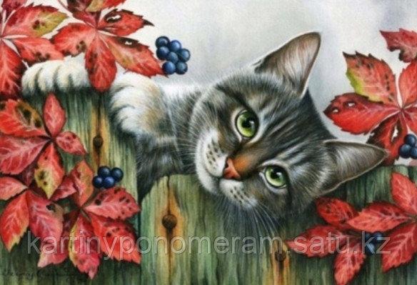 """Картина стразами на подрамнике (40х50 см) """"Котик"""" MB-383"""