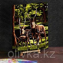 """Картина по номерам с дополнительными элементами """"Олени в лесу"""", 30х40 см"""