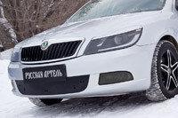 Зимняя заглушка решетки переднего бампера Skoda Octavia 2008-2013, фото 2