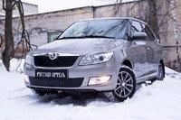 Зимняя заглушка решетки переднего бампера Skoda Fabia II 2010-2013, фото 2