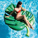 Матрас для плавания «Пальмовая ветка», 213 х 142 см, 58782EU INTEX, фото 2