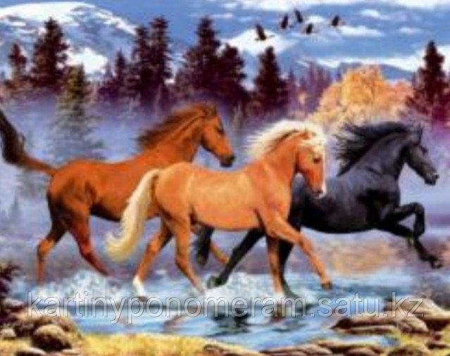 "Картина по номерам ""Три лошадки"""