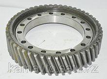5320-2402120-10   - шестерня ведомая Z-49