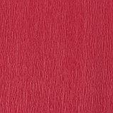 Бумага креп, с белым верхом, цвет красный, 0,5 х 2,5 м, фото 2