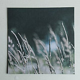 Набор бумаги для скрапбукинга с фольгированием «На рыбалку», 12 листов, 30.5 × 30.5 см, фото 10