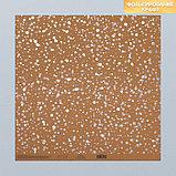 Набор бумаги для скрапбукинга «Крафтовый баховый», 10 листов, 30 × 30 см, фото 4