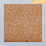 Набор бумаги для скрапбукинга «Крафтовый баховый», 10 листов, 30 × 30 см, фото 6