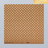 Набор бумаги для скрапбукинга «Крафтовый баховый», 10 листов, 30 × 30 см, фото 8