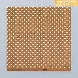 Набор бумаги для скрапбукинга «Крафтовый баховый», 10 листов, 30 × 30 см, фото 10