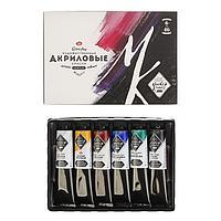 Набор художественных акриловых красок «Мастер-класс», 6 цветов, 46 мл, в тубе