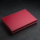 Набор столовых приборов «Мондиал», 24 предмета, толщина 2,5 мм, декоративная коробка, фото 5