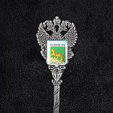Ложка в форме герба «Владивосток», фото 3