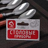 Набор ложек чайных «Красный дуб», h=16 см, 6 шт, фото 5