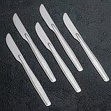 Нож столовый «Силуэт», h=19,3 см, толщина 1 мм, упрощённая обработка, фото 3