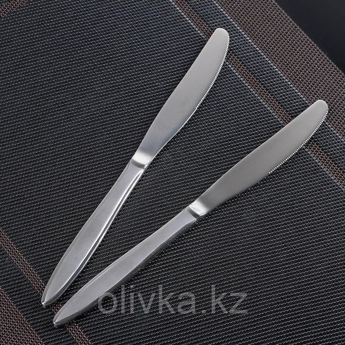 Набор ножей столовых «Перо», h=20 см, 2 шт