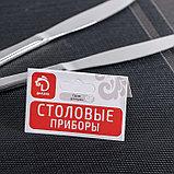 Набор ножей столовых «Перо», h=20 см, 2 шт, фото 4