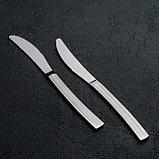 Набор ножей столовых «Прямая», h=23 см, 6 шт, фото 3